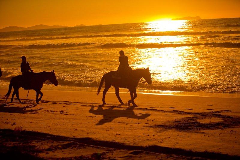 Horseback Riding Beach San Go The Best Beaches In World